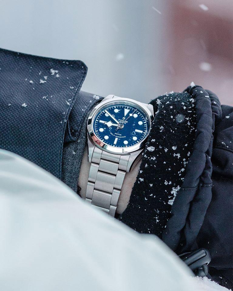 Tudor-Snow-Black-Bay